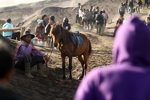 break after delivering its passengers to bromo crater.
