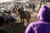 break after delivering its passengers to bromo crater.: by wahyudin, Views[138]