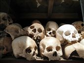 Skulls found in the many ditches of the killing field - many still remain there: by walkingabout2, Views[125]