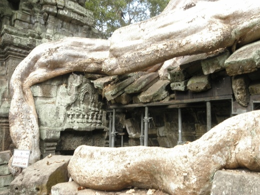 at Taprohm