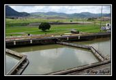 Panama Canal Lock Gates: by wandering_about, Views[89]