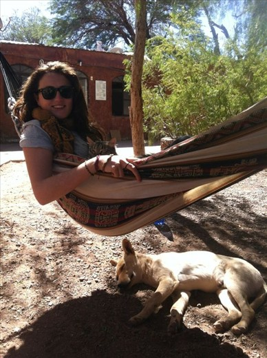 Relaxing with the local dogs and cats of San Pedro de Atacama, Chile