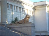Musuem of National Science - La Plata: by wandorion, Views[164]