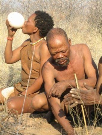 San Bushmen Survival Skills GHANZI