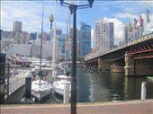 Sydney, Darling Harbour: by whereintheworld10, Views[103]