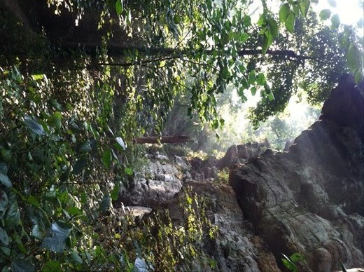 Cdale hiking