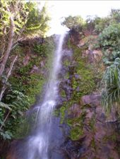 A 15 minute walk from Townsville CBD to this waterfall!: by whippin_picadilly, Views[490]