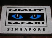 Night Safari: by whitneyj, Views[654]