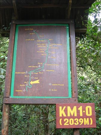 1 kilometer down, 7.7 to go.