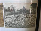 Victims' skulls and bones.: by whitneyj, Views[303]