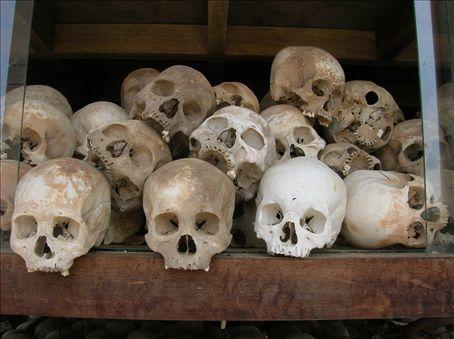 Skulls close up.