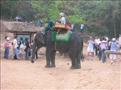 Elephant rides up to Phnom Bakheng to watch the sun set over Angkor Wat.: by whitneyj, Views[439]