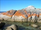 A beautiful contrast, blue sky, granite rock, orange lichen, and green-blue sea.: by whitneyj, Views[469]