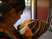 Whitney plays mom to a baby wallaby.: by whitneyj, Views[317]