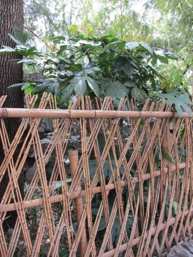 I like this simple fencing. The plant behind is typically used for decorations or food basket linings in daily life.