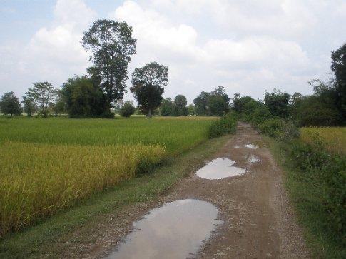 The railway line running through the paddies on Don Deth.