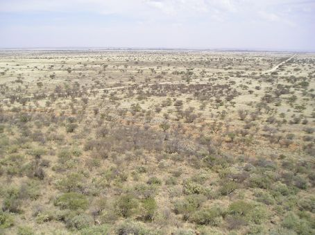 Magersfontein, looking across the battlefield from the top of the hill. The Boer trenches are the brown lines in the foreground.