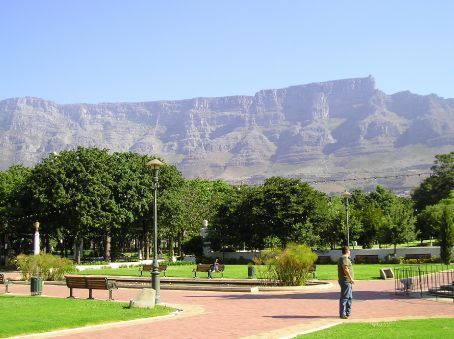 Table Mountain from the gardens in the centre of Cape Town.