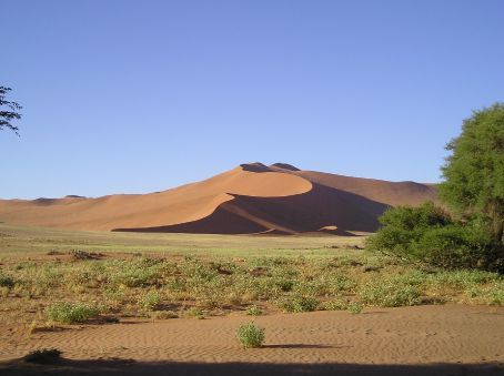 The sand dunes do not change their shape and each is distinctive.