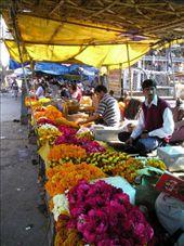 Flower sellers in Jaipur.: by willlou, Views[358]