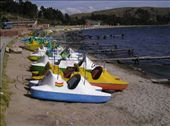 The highest pedalos in the world, on the highest navegable lake in the world.: by willlou, Views[625]