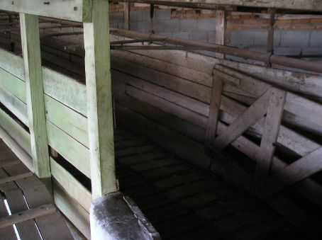 This is where the cows were led into the slaughter house, having a sterilizing shower as they went.