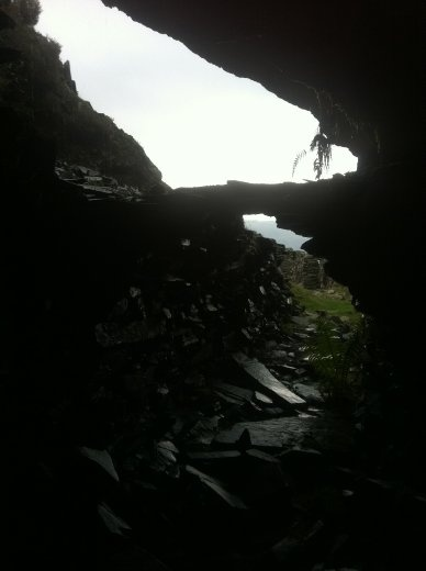 The cave behind my house, I didn't rent this one out because I died from lack of food before I had the chance. Man I'm famished, my tummy is going 'grrrraowwwwwll'..