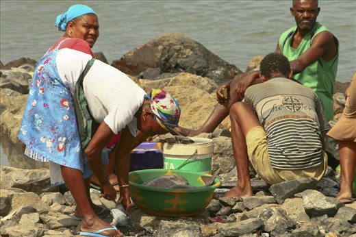 The fishing market of   Mindelo (Sao Vicente island)   seems to support an entir