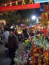 Tet, Vietnam.  Photo by Hanoi Mark, Flickr.com: by worldfestivals, Views[8333]