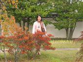 KO Ko-en Colour Change: by yasuko, Views[333]