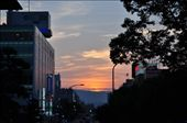 Nara Sunset: by yolandal, Views[295]