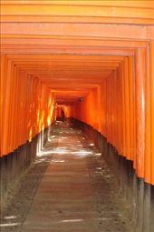 by yoshi, Views[133]