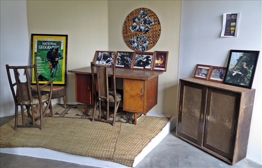 Furniture from Dian Fosseys' cabin with photos taken by Bob Campbell.