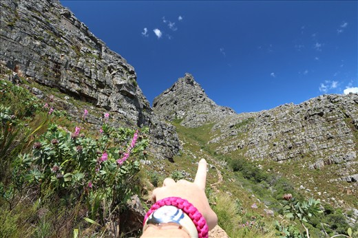 Hike up the Plateklip Gorge on Table Mountain.