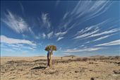 Namib Desert: by yvonnebooth, Views[203]