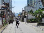 My route home from school: by zenjen, Views[78]