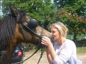horsie love: by zenjen, Views[136]