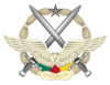 1200px cameroon air force badge svg
