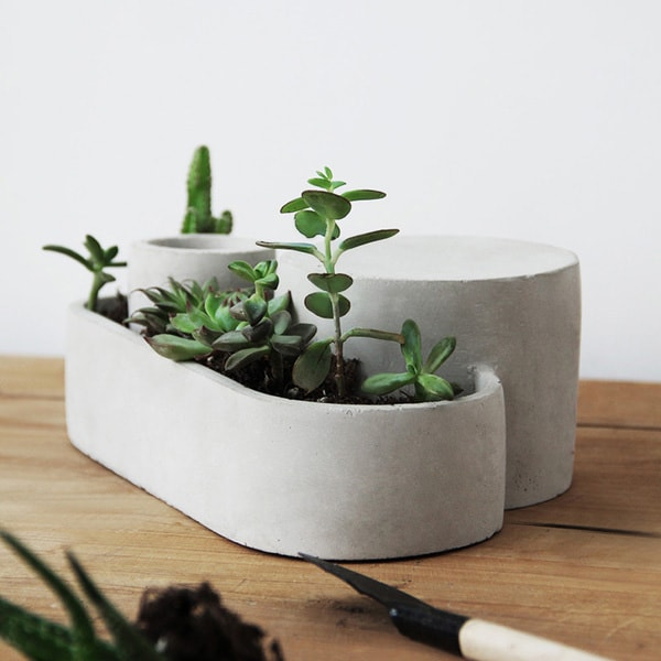 Concrete Geometric Succulent Planter Apollobox