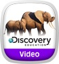 Discovery Education: Animals in Action Icon