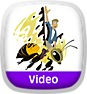 Wild Kratts: Bugs Icon