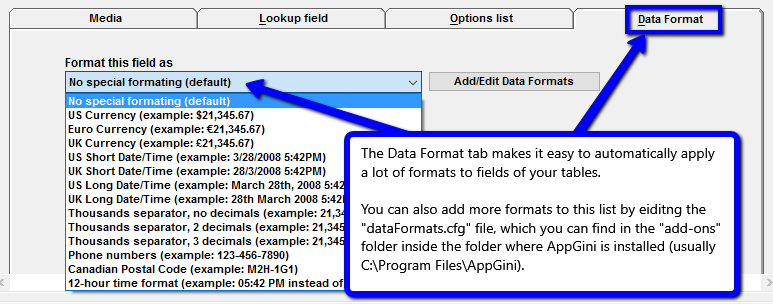 Field data formats in AppGini