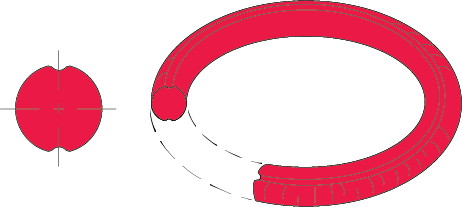 O-Ring天气或臭氧开裂