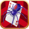 Spider Solitaire©