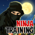 Ninja Jump Training Game