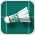 Gold Medal Badminton - Free Raquet Sports Game