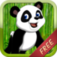 Panda Bear Baby Run FREE - Addictive Animal Running Game
