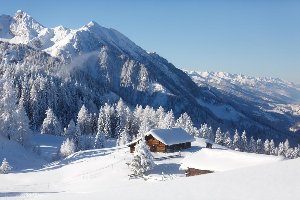 A Winter Travel Wonderland