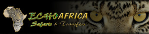 Kruger Echo Transfers and Accommodation (Pty)Ltd