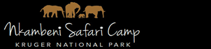 Echo Africa Safaris & Transfers